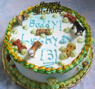 Birthday Cakes For Dogs